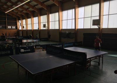 Ultimate-ping-2018-04